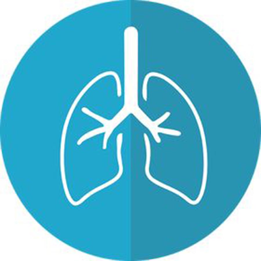 Healthy Lungs USA Logo