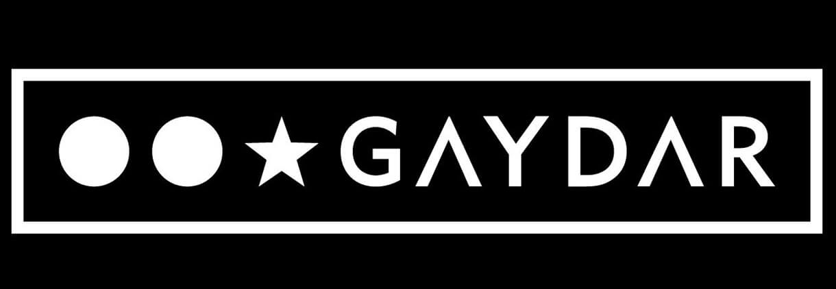 Gaydar in Review