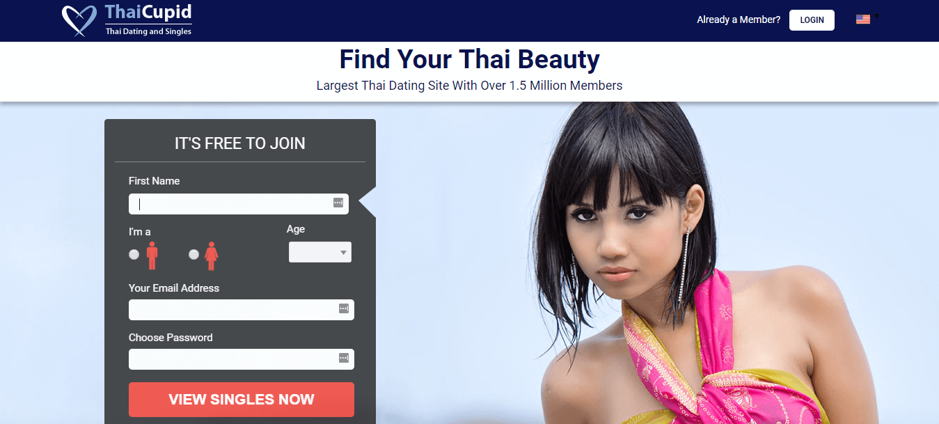 mit cupid dating site