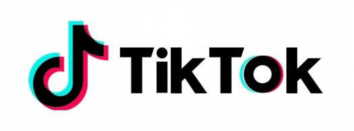 TikTok in Review