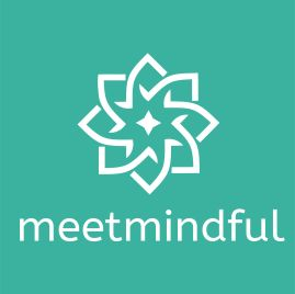 MeetMindful in Review