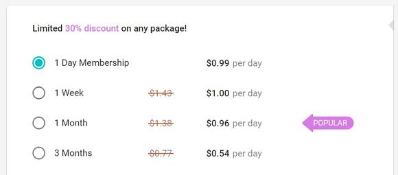 Buddygays US price